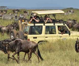 Safari-de-Tanzanie